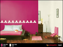 wall fashion nepal stylish paints nepal painting trends nepal