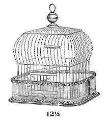 home interior bird cage new old fashioned bird cage 55 about remodel home decoration