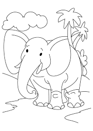 printable elephant coloring pages kids coloringstar