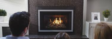 Gas Wood Burning Fireplace Insert by Regency Fireplace Products Gas Fireplaces Wood Fireplaces
