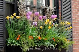 elegant window box in beacon hill boston local concord florist