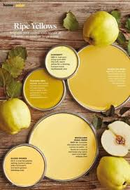 glidden paint walmart yellow bouquet bumblebee yellow is nice