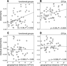 decoupling function and taxonomy in the global ocean microbiome