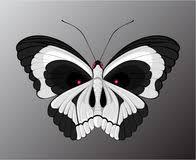 set butterflies to skulls vector illustration stock vector