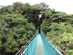 Treetop Canopy Tours by Costa Rica Canopy Suspension Bridge Tours