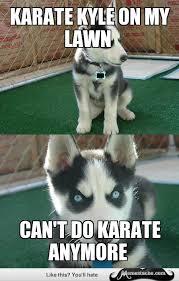 Karate Kyle Meme - insanity puppy karate kyle on my lawn general humor