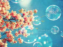 spring the season of renewal balance for life