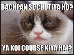Hi5 Meme - bachpan se chutiya ho ya koi course kiya hai grumpy cat