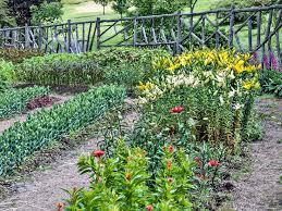 best 25 cut flower garden ideas on pinterest flowers garden