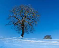 winter nature wallpapers winter hd nature wallpapers abstract hd wallpaper cool images