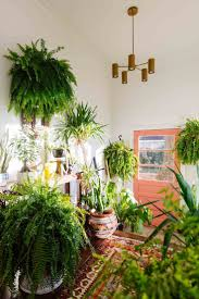 Home Plant Decor by Urban Jungle Hal Met Perzisch Tapijt En Koraalkleurige Deur