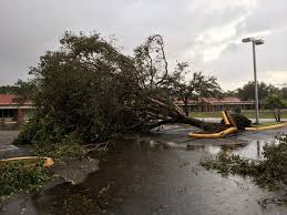 home depot black friday 2017 office hours hurricane irma what u0027s open and what u0027s closed sun sentinel