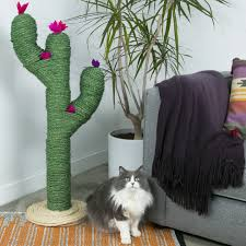 need a stylish place for your cat to scratch its paws this cactus