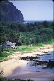 Kauai Cottages On The Beach by Kauai Oceanfront Vacation Rental Accommodations Gillin Beach