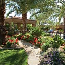 Desert Backyard Landscape Ideas 13 Best Tropical Desert Landscaping Images On Pinterest Desert