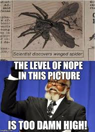 Nope Meme - the level of nope in this picture is too damn high meme