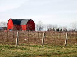 100 barn styles best 25 rustic barn homes ideas on