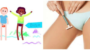 shave pubic hair video here s why you should never shave your pubic hair joe ie
