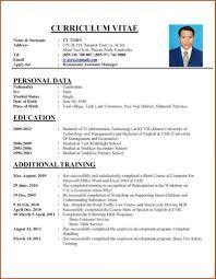 resume templates for job applications cv job application exle curriculum vitae sle job application