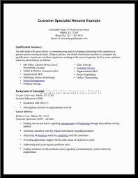 Professional Background Resume Examples by Summary Example For Resume