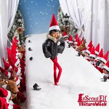 on the shelf clothes 57 best scout clothes the claus couture collection images on