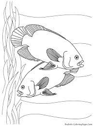 aquarium fish printable coloring sheet realistic coloring pages