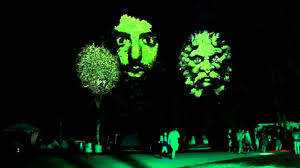 3d motion faces projected on trees with bassnectar wakarusa