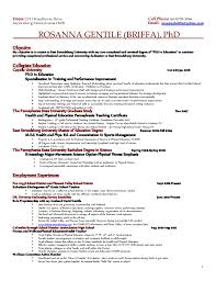 Sample Resume With One Job Experience by One Job Resume Examples Resume For College Librarian Resume