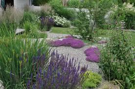 Haus Und Garten Ideen Kiesgarten Garten Pinterest Kiesgarten Freiraum Und Garten