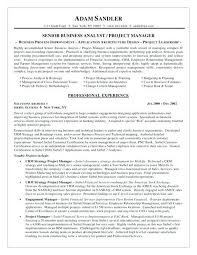 Business Analyst Resume Templates Samples Resume For Business Analyst Lukex Co