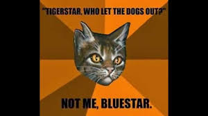 Who Let The Dogs Out Meme - tigerstar who let the dogs out by creditcolors on deviantart