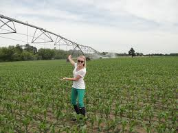 irrigated corn green pants center pivots and happy corn modern farm wife