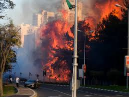 Type 1 Wildfire Definition by Israel Fires Al Qaeda Linked Palestinian Militant Group U0027claims