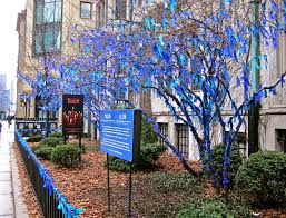 blue ribbons in trees enclos ure