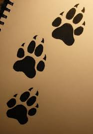 free wolf paw print free clip free clip on