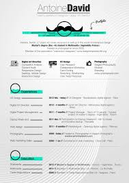 Experience Web Designer Resume Sample by 100 Resume Format Doc With Photo Informatica Administration