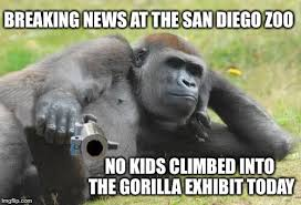 Funny Gorilla Memes - the will to live is strong with this one imgflip