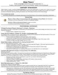 Project Coordinator Resume Examples Social Media Coordinator Resume Sample