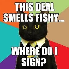 Deal Meme - this deal smells fishy cat meme cat planet cat planet