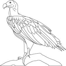 philadelphia eagles coloring pages eliolera com