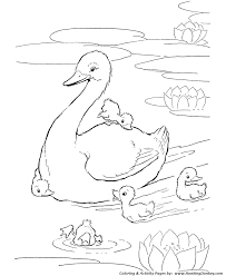 farm animal coloring pages printable ducks in the pond coloring