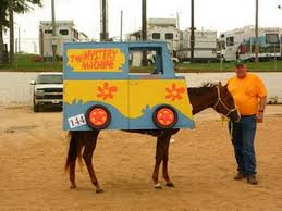 Dukes Hazzard Halloween Costumes Scooby Doo Happy Halloween Scooby Doo Horse