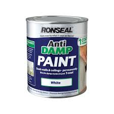 Anti Mould Spray For Painted Walls - ronseal white one coat anti damp paint 750ml at homebase co uk
