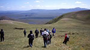 ecology undergraduate degrees study here the university of