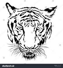 tiger black white vector design stock vector 114515128