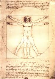 file da vinci u0027s anatomical man jpg wikimedia commons