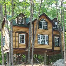 builder who is obsessed with tree houses builds his dream home in