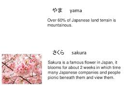 Flowers In Japanese Culture - hiragana culture 1 u00262