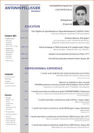 Curriculum Vitae Sample Format Doc by English Resume Free Resume Example And Writing Download