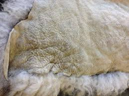 Sheepskin Rug Cleaning 60 Best Wet Cleaning Images On Pinterest Cleaning Google Search